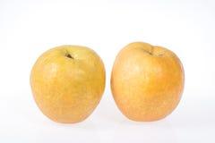 Pear Royaltyfria Bilder