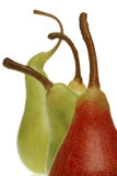 Pear. Colorful pear stems Stock Photo