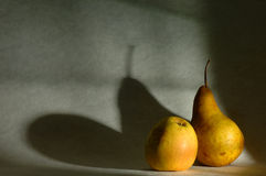 Free Pear And Apple Royalty Free Stock Image - 1608446