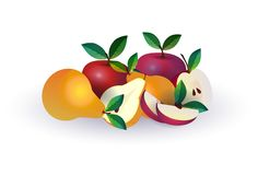 Pear apple fruit on white background, healthy lifestyle or diet concept, logo for fresh fruits. Vector illustration royalty free illustration
