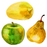 Pear, apple, lemon watercolor illustration on white background Royalty Free Stock Photography
