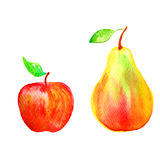 Pear, banana hand drawn painting watercolor illustration on white background Royalty Free Stock Images