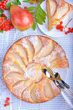 Pear cake. In white plate on white table Stock Photography