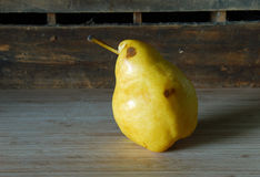 Pear Chick Stock Photo