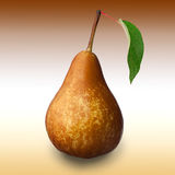 Pear. Close-up image of pear and leaf studio against brownish gradient background royalty free stock image