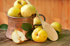 Pear in Copper Jug Stock Photography