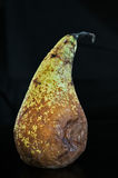 Pear decaying Royalty Free Stock Images