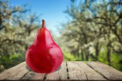 Pear. Evolution Change Fruit Missing Bite Image Sequence Progress Stock Photography