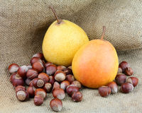 Pear with filbert. Ripe pear with filbert nuts jn the linen texture Stock Images