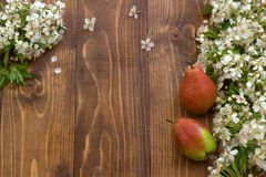 Pear and flowering branch on a wooden board. Stock Images