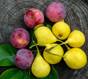 Pear freshly picked yellow and pink plum on a wooden stump. Stock Photos