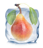 Pear frozen in the ice cube close-up  on white background Stock Photo