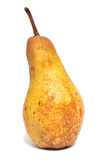 Pear fruit. Ripe pear fruit isolated on white background Royalty Free Stock Photo