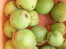Pear fruit. European pear pomaceous fruits healthy vegetarian food royalty free stock photography