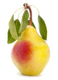 Pear fruit with leaf Stock Photo