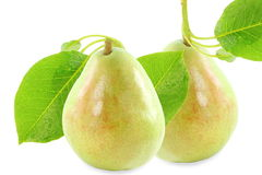 Pear fruit with leaves in pure white background Stock Image