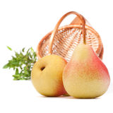 Pear fruit and wicker basket  on white background cutout. Autumn harvest concept Royalty Free Stock Images