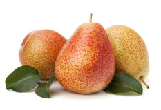 Pear fruits Stock Images