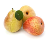 Pear fruits Royalty Free Stock Photos