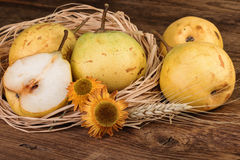 Pear Fruits Still Life Royalty Free Stock Images