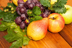 Pear and grapes Stock Images