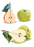 Pear green vector leaf healthy apple fruits stock illustration