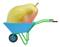Pear in hand-barrow Royalty Free Stock Images