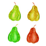 Pear hand drawn painting watercolor illustration on white background, food ingredient, organic natural vegetarian exotic fruit for Royalty Free Stock Photography