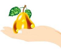 Pear i hand vektor illustrationer
