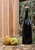 Pear juice bottle with two pears Stock Images