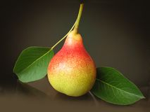Pear with Leafs Royalty Free Stock Photography