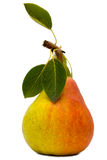 Pear with leaves Stock Photography