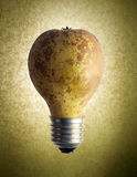 Pear Light Bulb Stock Photography