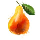 Pear logo design template. fruit or food icon Stock Images
