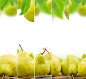 Pear mix Stock Photo