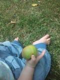 Pear och äpple Arkivfoto