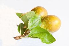 Pear Pair Stock Image