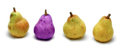 Pear,pears. Situation Stock Images