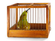 Pear, prisoner in the cage. Pear, prisoner in the cage made of wood with iron rods, isolated Royalty Free Stock Photos