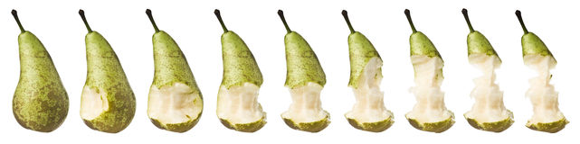 Pear in progress Royalty Free Stock Image