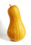 Pear Pumpkin Royalty Free Stock Image