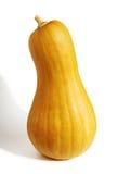 Pear Pumpkin Royalty Free Stock Image