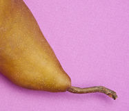 Pear on Purple Stock Photo