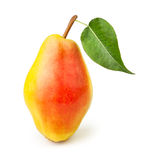 Pear red one leaf Stock Photo