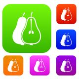 Pear set collection Royalty Free Stock Photos