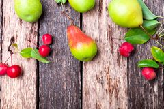 Pear and small apple on wooden rustic background. Top view. Frame. Autumn harvest. Copy space. Stock Images