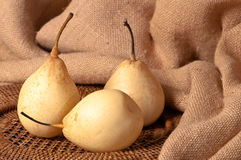 Pear Still Life Stock Photo