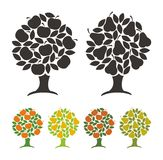 Pear tree and apple tree. Royalty Free Stock Photography