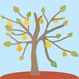 Pear tree at the autumn. Card Stock Photos