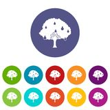 Pear tree with pears set icons Stock Image